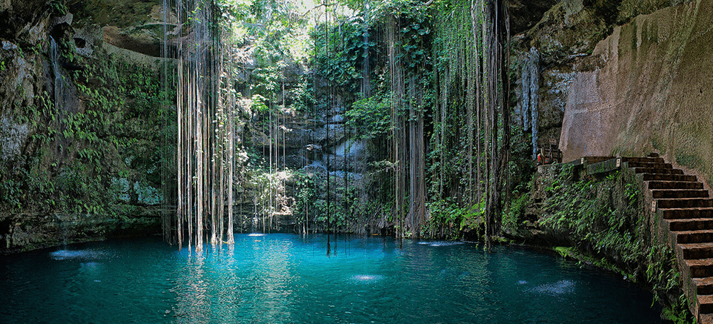 Cenote with clear water and vines hanging